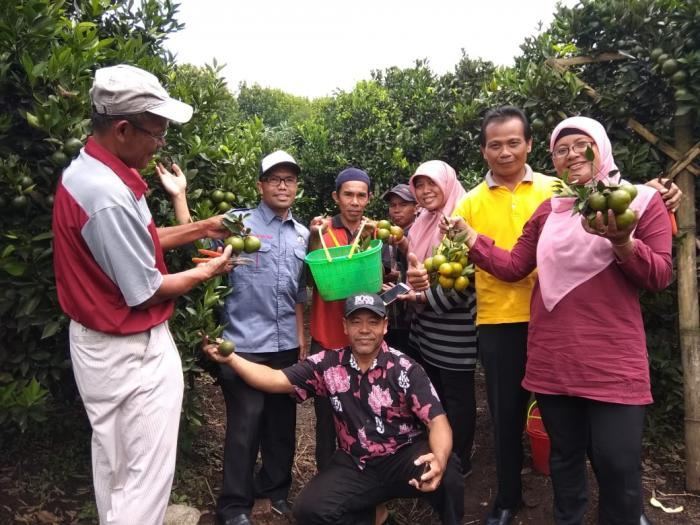 Study Banding dari kota Depok ke wahana kebun jeruk