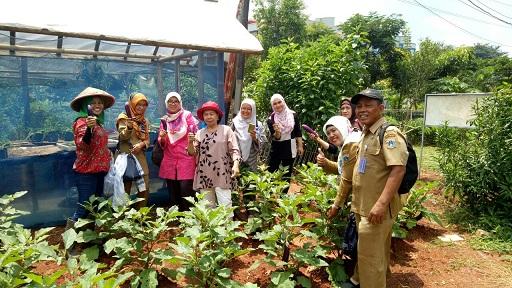Urban Farming di Kawasan Rumah Susun Sederhana Sewa (RUSUNAWA)  Jakarta Timur Terus Berkembang