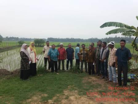 Pertemuan Dengan Kelompok Tani SL Padi Dalam Kecamatan Jangka