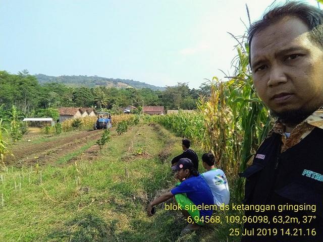 Hibah Traktor Roda 4 Dalam Mendukung Ltt Jagung Di Upja Rukun Tani Desa Ketanggan Kecamatan Gringsing