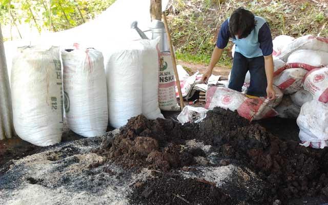 Mengolah Kotoran Sapi Menjadi Pupuk Organik Padat Kompos
