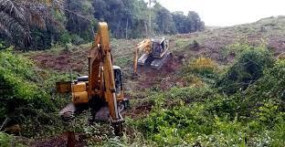 Penumbuhan dan Pengembangan Korporasi di Areal Perkebunan